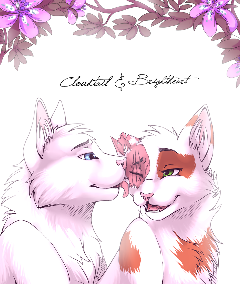 Cloudtail x Brightheart by Lilinera