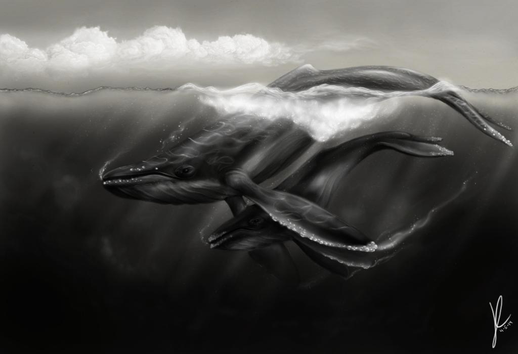 Humpbacks by gothams--reckoning