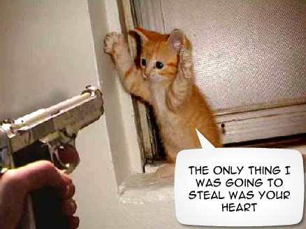 Cat Burgler by LargeAnimal