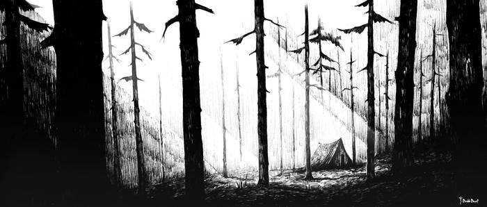 Woods II