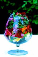 Garden cocktail anyone? by BrightArrow
