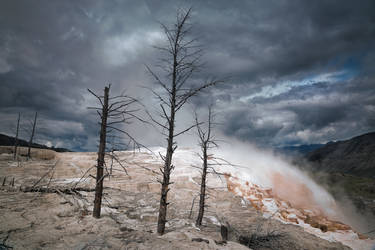 Mammoth Hot Springs by Mark-Fisher-Photos