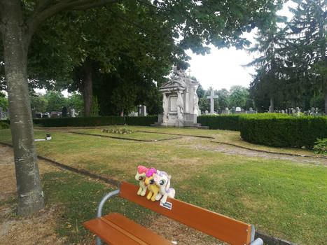 The Cutie Mark Crusaders @ Vienna Central Cemetery