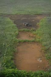 .a path to the Gazebo.