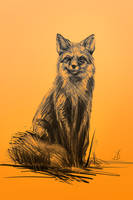 13/365 - fox by h1fey