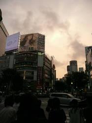 Shibuya Crossing by ShiverZPhotography