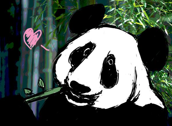 Panda Love by 66VI
