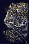 Scratch art: Chinese leopard - color