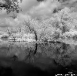 Savica sanci lakes - V 2020 1