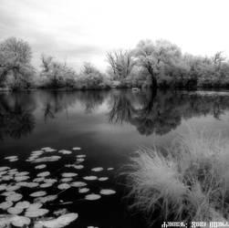 Savica sanci lakes - V 2020 4