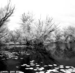 Savica sanci lakes - V 2020 5