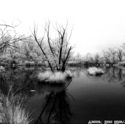 Savica sanci lakes - V 2020 7