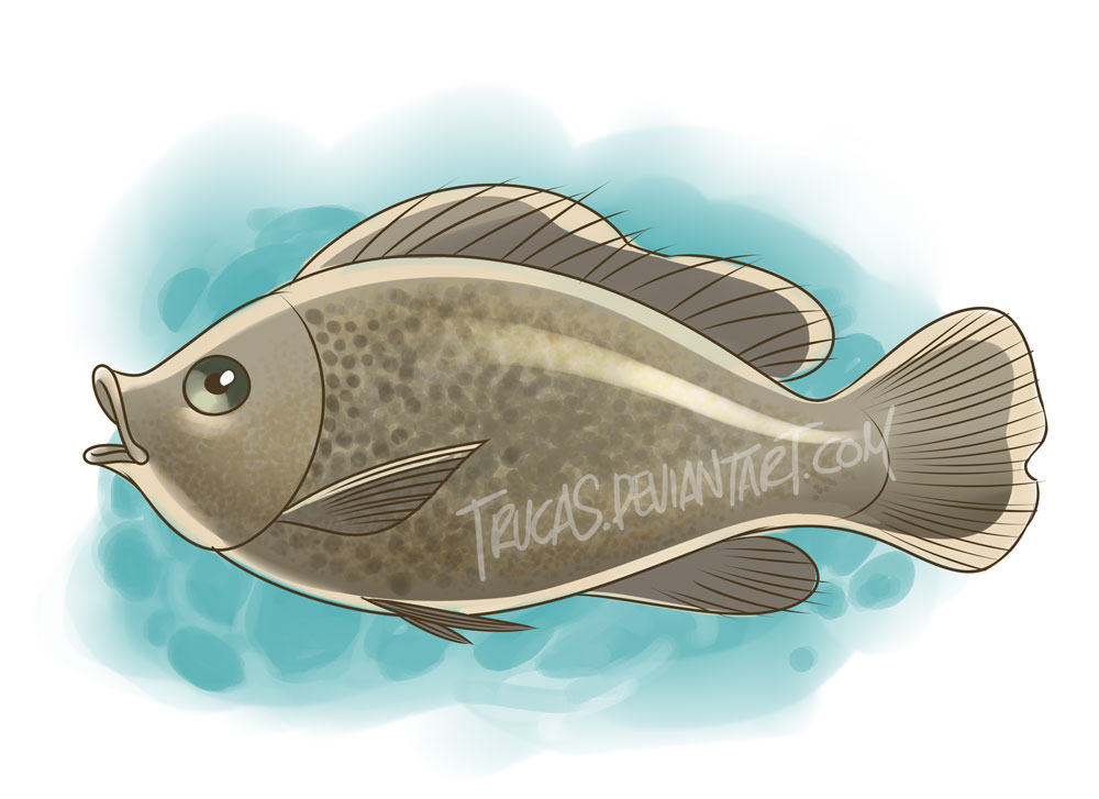 Just a fish by Trucas