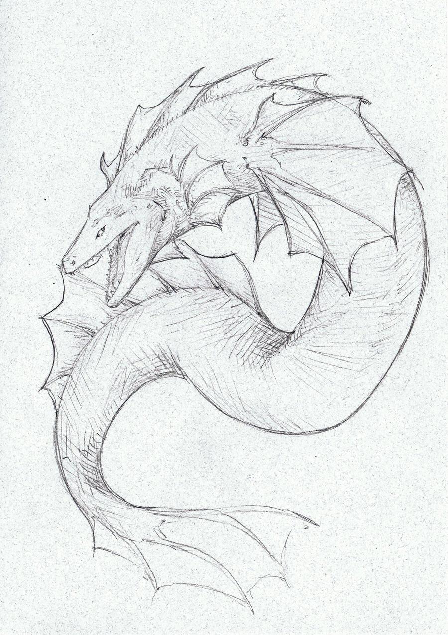 Fantastic Electric Eel Anatomy Illustration Anatomy Ideas Yunoki