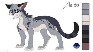 Ashfur Design