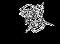 Sly animation by KingAdam