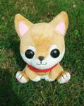 Shibao sitting on grass