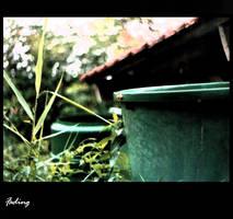 Fading by albinoferret