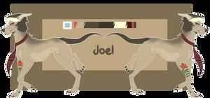 [ REF 2016 ] Joel