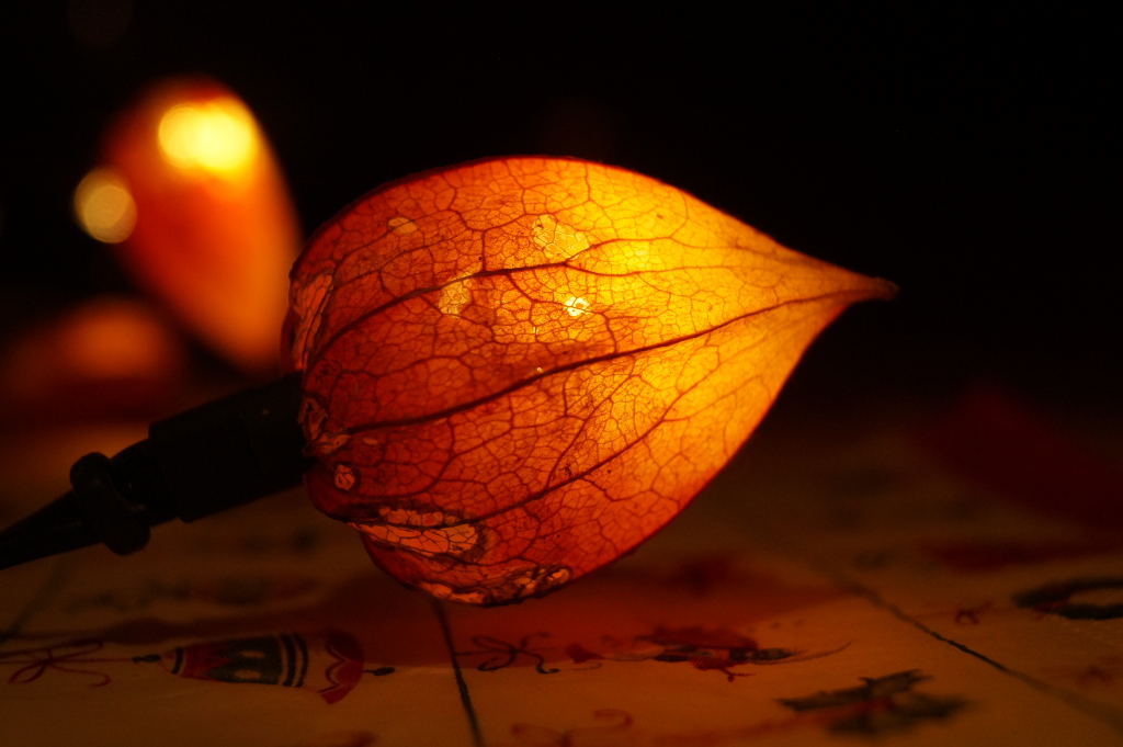 Little Lampion Fruit by Rick-TinyWorlds
