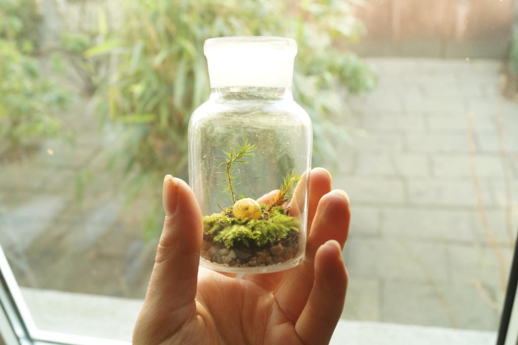 Little Moss Terrarium by Rick-TinyWorlds