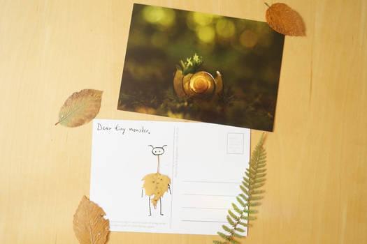 Postcard Print: Circle of Life