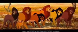 Kings of pride rock