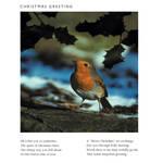 Christmas Poem: Christmas Greeting -Christmas by CliveBlake