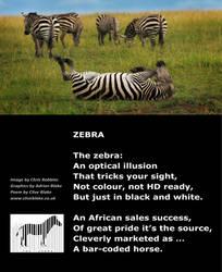 Zebra Poem 02 -Zebra -Clive Blake poetry by CliveBlake