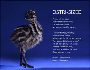 Poem -Ostri-Sized +bord -Clive Blake poetry