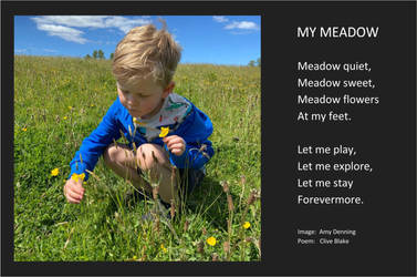Poem -My Meadow +bord -Cornish Poet Clive Blake