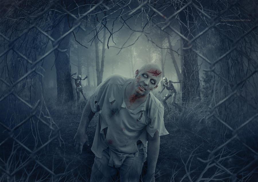 Zombie by VitaShuba