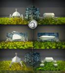 Collage Eggo vs Roskosmos