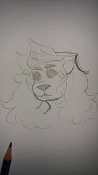 lion boi