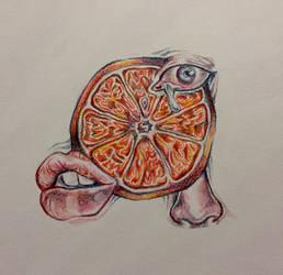 Grapefruit Fragmentation by kidfigment