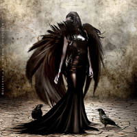 The Raven Angel by Selenys