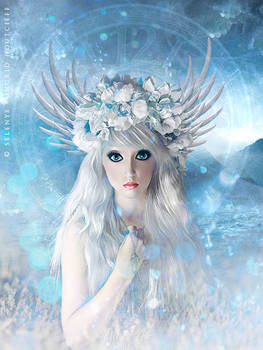 Ice Lilly