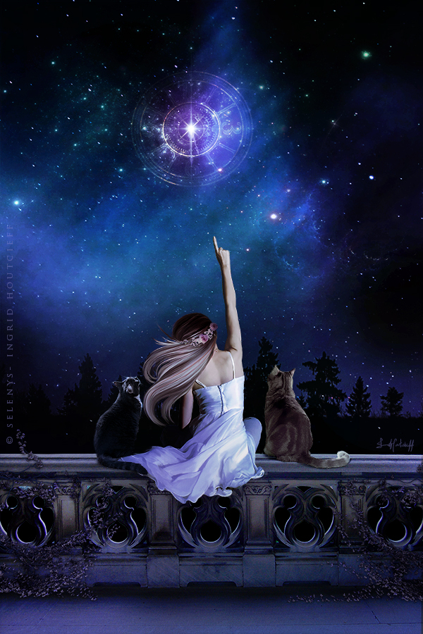 Sirius, the most shining star by Selenys