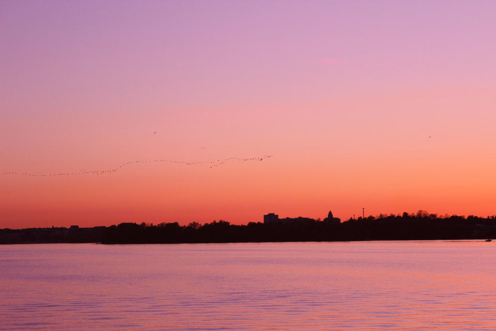 Sunset and Goose Flock by loonyleo