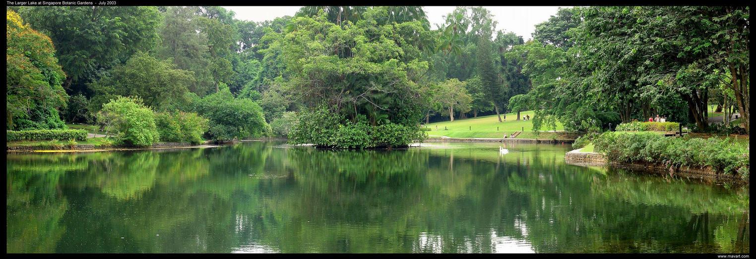 Singapore Botanic Gardens Lake by mavart