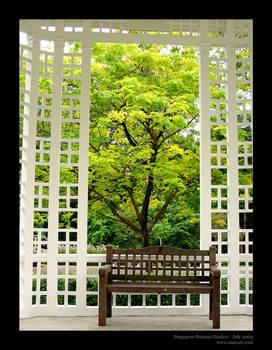 Pagoda View