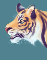 just a tiger by diabloceratops