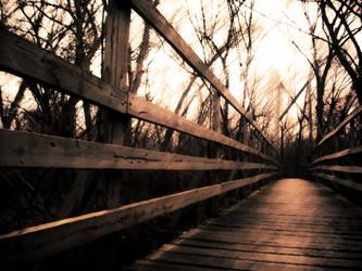 bridge by art-overflow