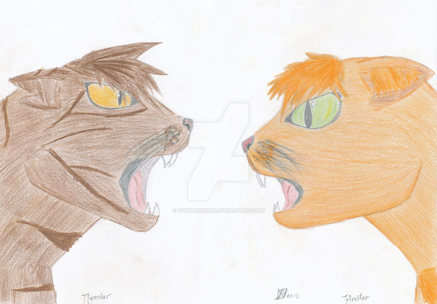 Tigerstar vs Firestar by Ivywhisker99