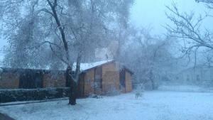 White Christmas Texas