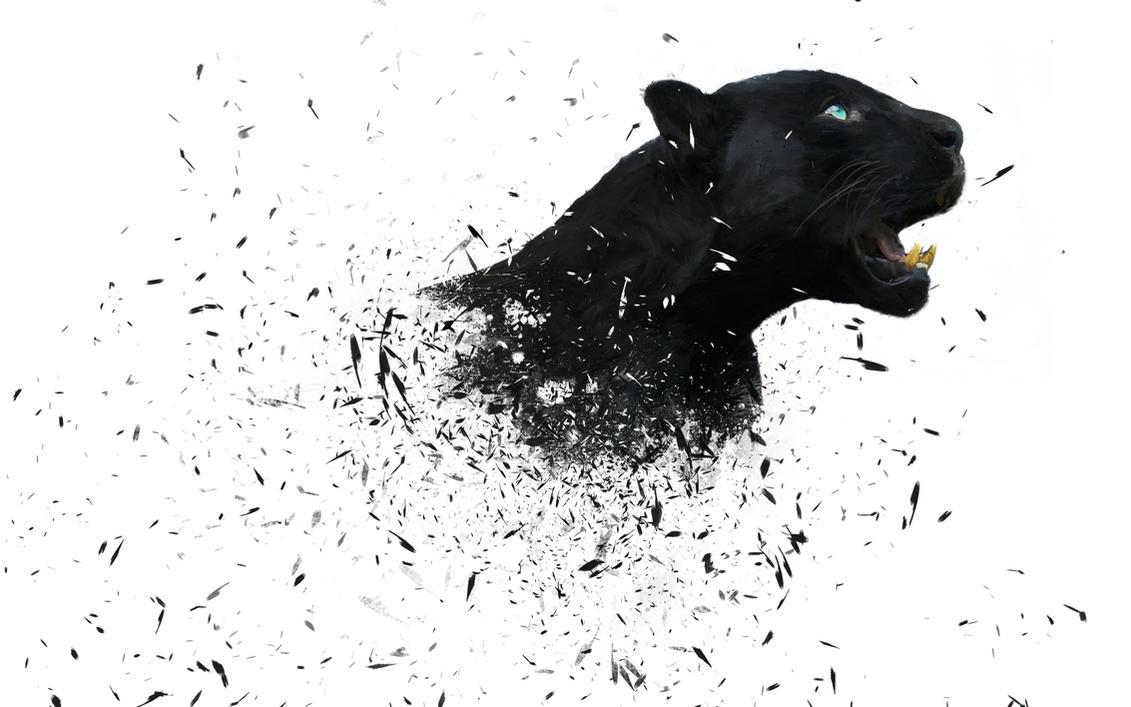 Panther by PodaViktor-SK