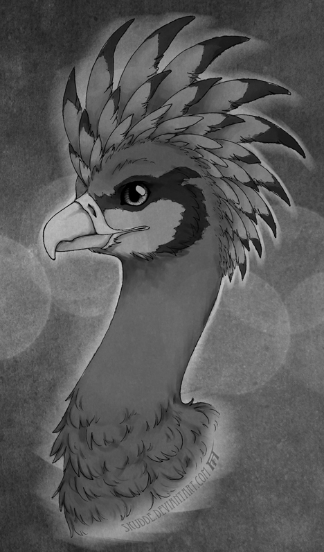 Colors of Greyscale by Skudde