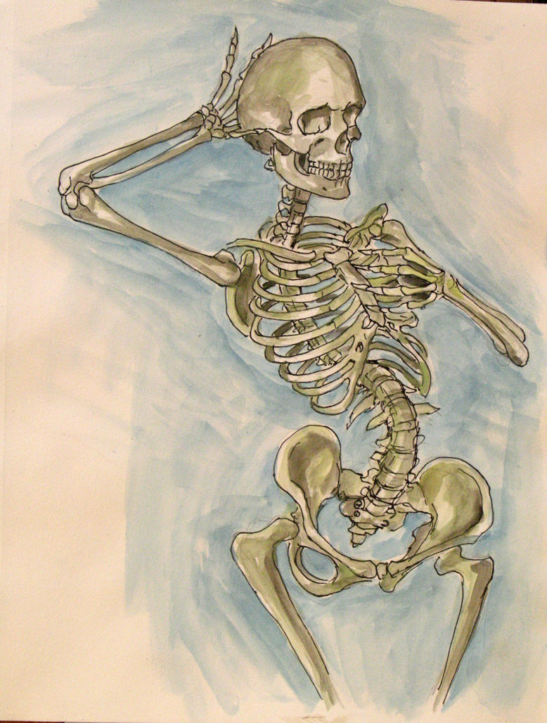 Ink and Watercolor Skeleton Study by rawjawbone