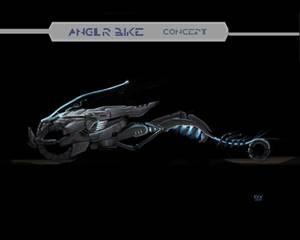 Angler Concept