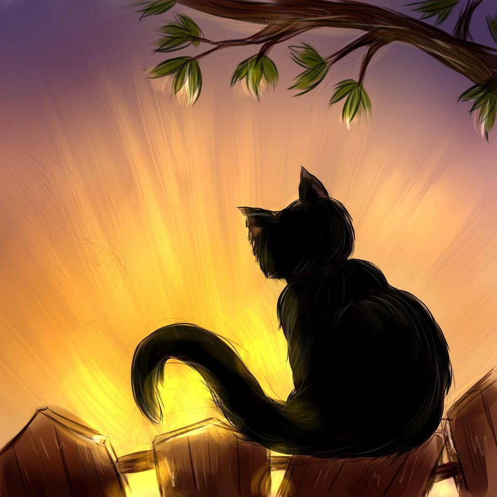 Cat by AbussLunaris